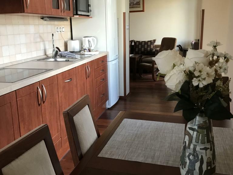 Apartmán Deluxe - kuchyně s jídelnou