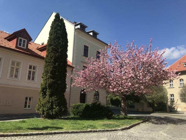 Apartmány Bašta v květnu